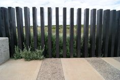Black timber fence, Burnside Heights (design by FFLA)
