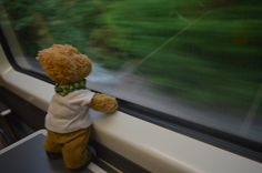 On the train to Brighton | Misiu our teddy besr