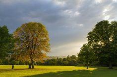 Victoria Park, Bath