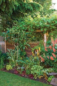 The Sustainable Garden--this is a compost fence. It provides privacy screening as well as fertilizer for the plants.