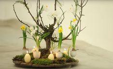 VIDEO: Zo maak je een originele paasboom - Libelle Baby Shower Decorations, Glass Vase, Candle Holders, Candles, Plants, Net, Dried Flowers, Home Decor, Dragon Flies
