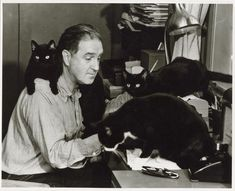 John Patrick, author of It's a Dog's Life, at home with his typewriter and enthusiastic pet cats