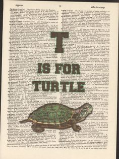 T is for Turtle Vintage Upcycled Book Page by StorybookArtPrints