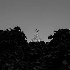 """#exploring #Maine #myMaine #wandering #exploreusa #exploreMaine #exploreAmerica #summer #August #bnw #blackandwhite #daylight #lookingup"" Photo taken by @ndoocy on Instagram, pinned via the InstaPin iOS App! http://www.instapinapp.com (09/02/2015)"