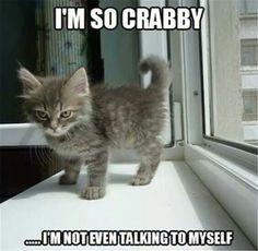 I'm so crabby!