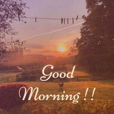 Latest good morning images with flowers ~ WhatsApp DP, Love DP, DP Images, WhatsApp DP For Girls Happy Sunday Morning, Good Morning Nature, Good Morning Greetings, Good Morning Good Night, Good Morning Wishes, Good Day Images, Latest Good Morning Images, Good Morning Image Quotes, Morning Pictures