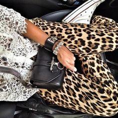 leopard + converse