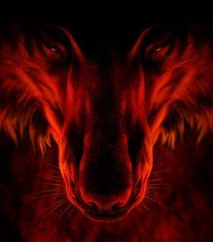 Wolf of Fire. Looks like my soul.