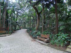 Trianon Park, Sao Paulo, Brazil
