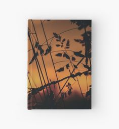 Bring the calming, warm morning sun with you with this georgous Hardcover Journal. Shine all day! Morning Sun, Calming, Journal, Warm, Paper, Prints, Painting, Accessories, Design