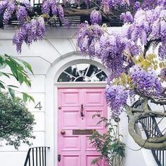 rankhilfe f r blauregen bringt die pflanze richtig zur geltung im garten wohnzimmer pinterest. Black Bedroom Furniture Sets. Home Design Ideas