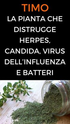 La pianta che distrugge herpes, candida, virus dell'influenza e batteri