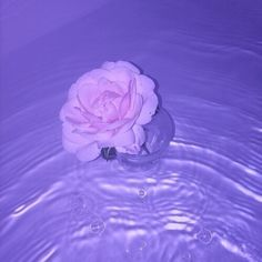 Images of pastel purple aesthetic - Violet Aesthetic, Dark Purple Aesthetic, Lavender Aesthetic, Rainbow Aesthetic, Aesthetic Colors, Aesthetic Grunge, Aesthetic Pictures, Water Aesthetic, Purple Aesthetic Background