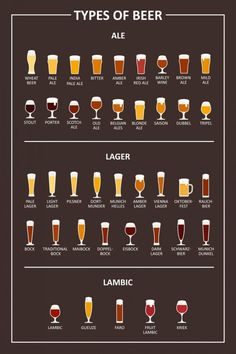 Ales vs Lagers : The Two Main Types of Beer - Many people ask what is the differ. - Ales vs Lagers : The Two Main Types of Beer – Many people ask what is the difference of Ales vs L - Beer Types, Different Types Of Beer, Alcohol Drink Recipes, Beer Recipes, Homebrew Recipes, Beer Infographic, Porter Beer, Beer Pairing, Home Brewing Beer