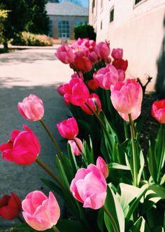 Pinterest: Kylie Prigmore