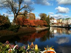 A view of the Central Park and the river Viskan a sunny atumn day (2011) in my home town: Borås, Sweden.