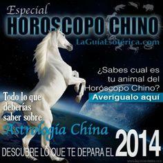 Especial Horoscopo Chino