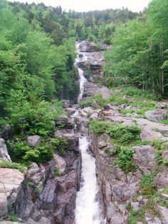 Silver Cascade Falls in Crawford Notch, NH, courtesy of Elwyn Wheaton.