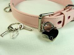 Locking Buckle Collar and Lock 3 Dee Rings Pink by PinchtheMuse, $58.00