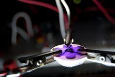 Testing a LilyPad Arduino light sensor   Flickr - Photo Sharing!