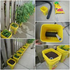 Container Gardening Hack: DIY Self Watering Container Garden for Maximum production. No matter what time of year, it is never too late to get ready for the growing season. Of course, there are many things to consider when putting together yo Bucket Gardening, Hydroponic Gardening, Hydroponics, Organic Gardening, Gardening Tips, Aquaponics Diy, Urban Gardening, Urban Farming, Vegetable Garden Design