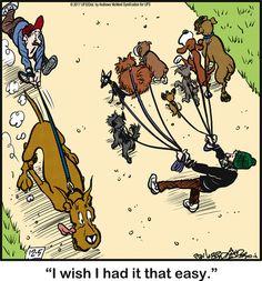 Dog Comics, Read Comics, Funny Comics, Dog Cartoons, Cartoon Dog, Funny Animal Pictures, Funny Animals, Bedtime Prayer, Dane Puppies