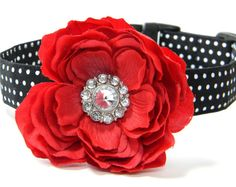 Hey, I found this really awesome Etsy listing at https://www.etsy.com/listing/121669052/dog-collar-flower-set-flower-dog-collar