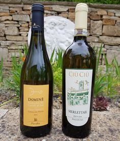 Two white wines from Le Marche in Italy