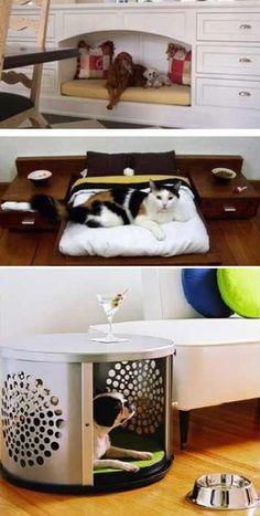 Creative Pet Friendly Furniture