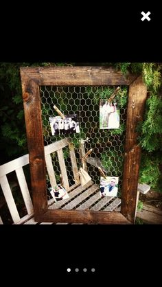 Chicken wire and frame