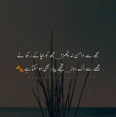 Image Poetry, Poetry Pic, Poetry Lines, Love Poetry Urdu, Rumi Love Quotes, Poetry Quotes, Love Drawings Couple, Happy Birthday Wishes Sister, Poetry Famous