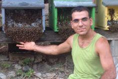 APE NERA SICULA: Perde il lavoro per la crisi e si reinventa apicol...