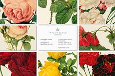The world's loveliest and most feminine business cards. They remind me so much of my late grandmother, a woman who taught me always to carry a handkerchief and breath mints.