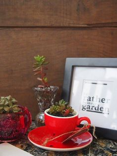 Upcycled Succulent Planters With The Vintage Upcycled Garden http://ift.tt/292r0Jt - http://ift.tt/1HQJd81