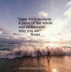 Taste for a moment a piece of the whole, and understand who you are. - Rumi ⚫
