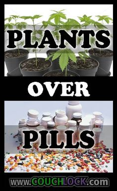 PLANTS over PILLS! FREE YOUR MIND ONE PUFF AT A TIME!