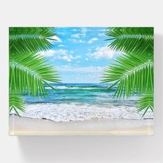 Wall Murals Tropical Beach Scenes 36 Ideas For 2020 Beach Scene Images, Beach Images, Beach Scenes, Beach Pictures, Nature Pictures, Beach Wallpaper, Wallpaper Gallery, Nature Wallpaper, Background For Photography