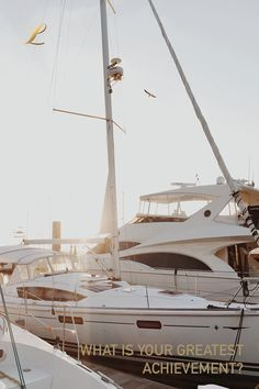 Armando-G luxury safe models offer a specific and detailed design, all handcrafted with the best quality finishes. Visit all luxury safe models. Seabrook Island, Yacht Wedding, Hilton Head Island, Super Yachts, Sail Away, Sailing Ships, Sailing Yachts, Best Funny Pictures, Charity