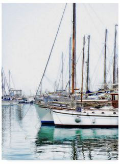 Liz Zernich 'Trip Boats' Canvas Art - 18 x 24 Artist Canvas, Canvas Art, Boating Tips, Luxury Yachts, Catamaran, Outdoor Lounge, Face Cleanser, Water Crafts, Riviera Maya