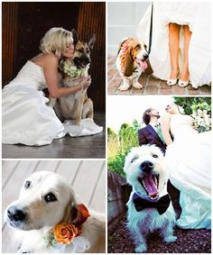 My dogs and horses will def be in my wedding