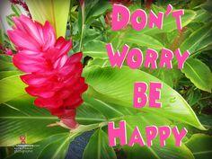 https://www.facebook.com/Roslyn-Uttleymoore-Nutritionist-125806614147930/