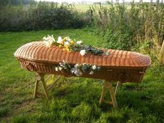 Willow eco coffin