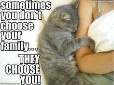 sometimes you don't choose your family..they choose you.  <3
