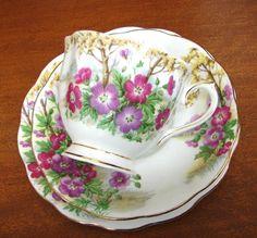 vintage Royal Albert Bone China Tea Trio cup saucer plate Wild Geranium  b