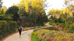 ETAPA 4 #Betanzos - #HospitalDeBruma (28 kms) #CaminodeSantiago #CamiñoInglés #CaminoIngles #TheWay #TheCamino #EnglishWay #EnglishRoute #StJamesWay #WayofSaintJames #pilgrim #pilgrimage #peregrino