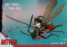 Marvel Ant-Man on Flying Ant Collectible Figure by Hot Toys | Sideshow Collectibles