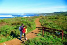 The Bibbulmun Track is one of the world's great long distance walk trails