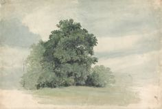 Cornelius Varley, 1781-1873, British, Study of Trees at the Edge of a Field, undated, Watercolor with white gouache, cream, slightly textured wove paper on thick, cream, slightly textured wove paper, Yale Center for British Art, Paul Mellon Collection