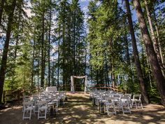 Forest ceremony venue at Halcyon Hot Springs in Nakusp, British Columbia.