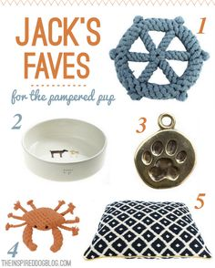 Jack the Goldendoodle's favorite modern & chic dog accessories.
